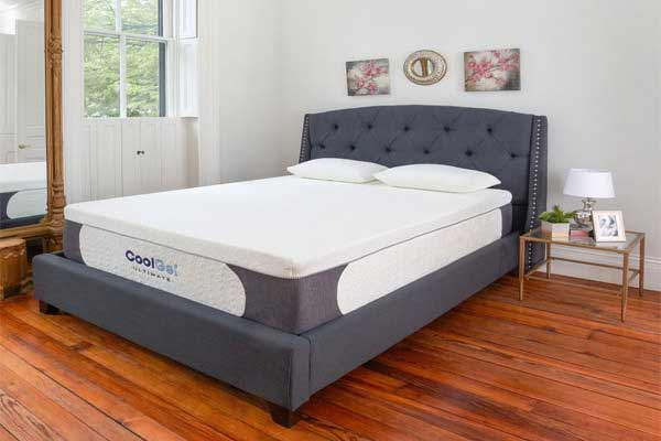Mattress Or the Bed Frame