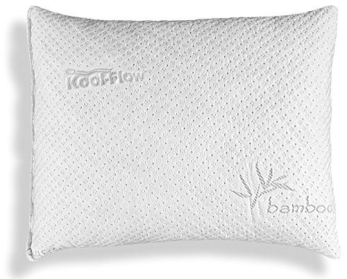 Xtreme Comforts Memory Foam Bed Pillow